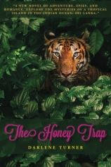 The Honey Trap by Darlene Turner (Fiction / Romance / Suspense)